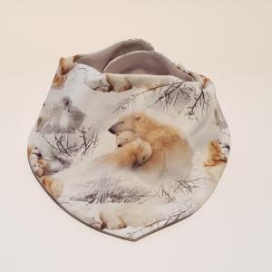 Jääkarud lumel kaelarätt