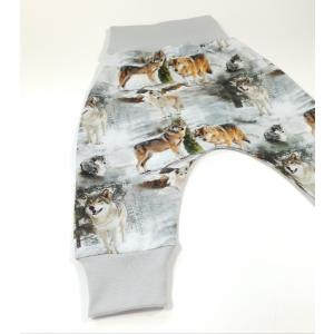 Hundid metsas soonikuga püksid